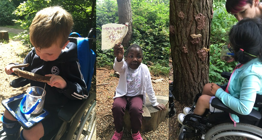 Children at Holy Lodge Centre learning about nature